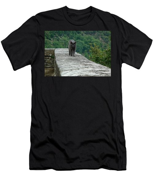 Gray Cat Prowling Men's T-Shirt (Athletic Fit)