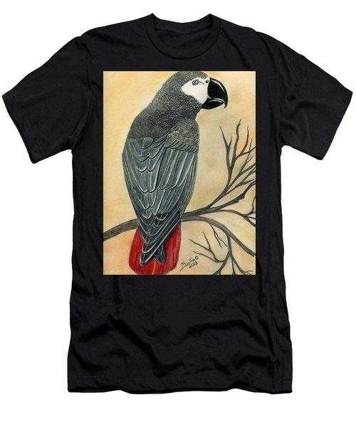 Gray Parrot Men's T-Shirt (Athletic Fit)