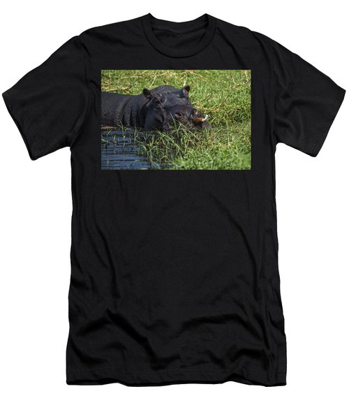 The Hippo And The Jacana Bird Men's T-Shirt (Athletic Fit)