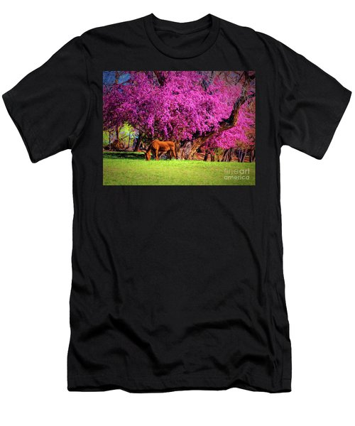 Grazing Horse  ... Men's T-Shirt (Athletic Fit)