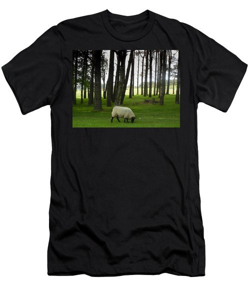 Grazing In The Woods Men's T-Shirt (Athletic Fit)