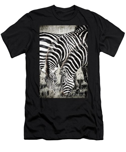 Grazing Zebras Close Up Men's T-Shirt (Slim Fit) by Darcy Michaelchuk