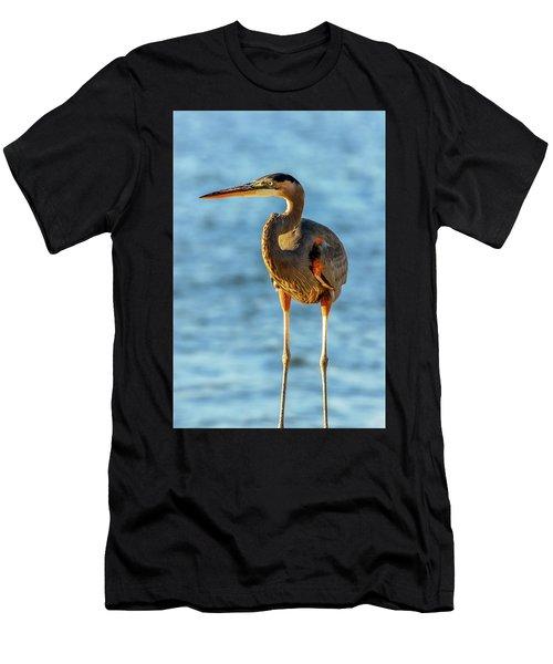 Great Blue Heron Closeup Men's T-Shirt (Athletic Fit)