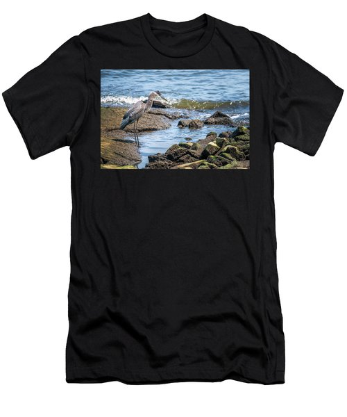 Great Blue Heron Fishing On The Chesapeake Bay Men's T-Shirt (Athletic Fit)