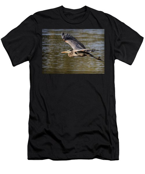 Great Blue Heron In Stratford Men's T-Shirt (Athletic Fit)