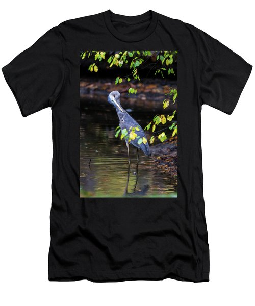 Great Blue Heron With An Itch Men's T-Shirt (Athletic Fit)