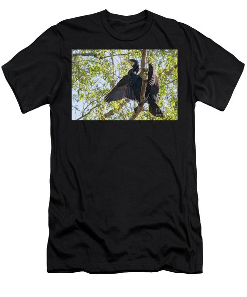 Great Cormorant - High In The Tree Men's T-Shirt (Athletic Fit)
