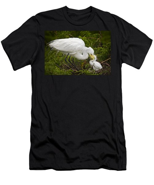 Great Egret And Chick Men's T-Shirt (Athletic Fit)