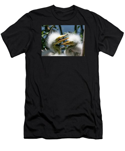 Great Egret Chicks Men's T-Shirt (Athletic Fit)