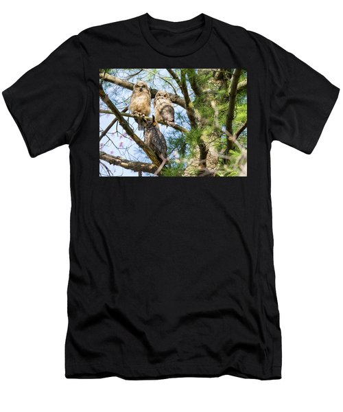 Great Horned Owl Family Men's T-Shirt (Athletic Fit)