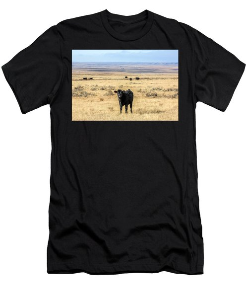 Great Plains Steer Men's T-Shirt (Athletic Fit)