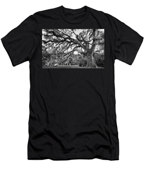 Great Tree Men's T-Shirt (Athletic Fit)
