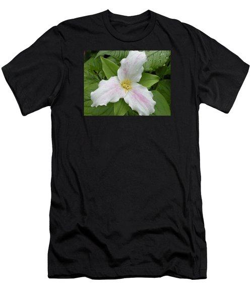 Great White Trillium Men's T-Shirt (Athletic Fit)