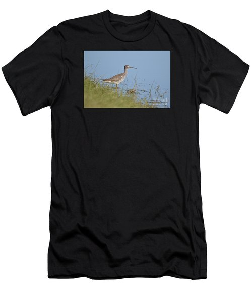 Greater Yellowlegs Men's T-Shirt (Athletic Fit)