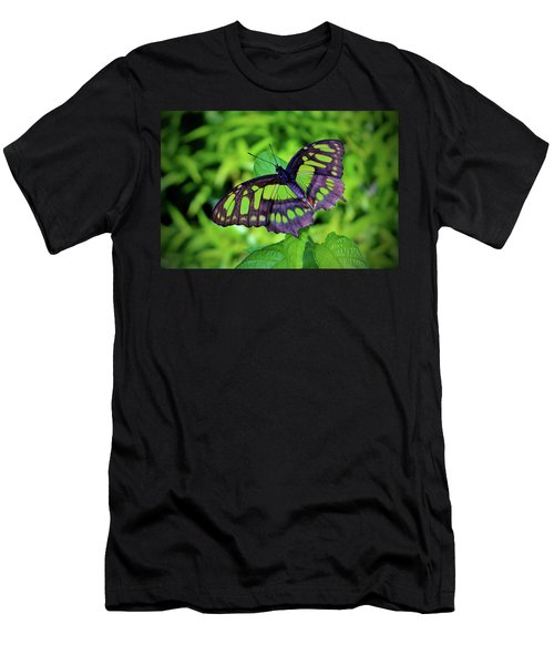 Green And Black Butterfly Men's T-Shirt (Athletic Fit)