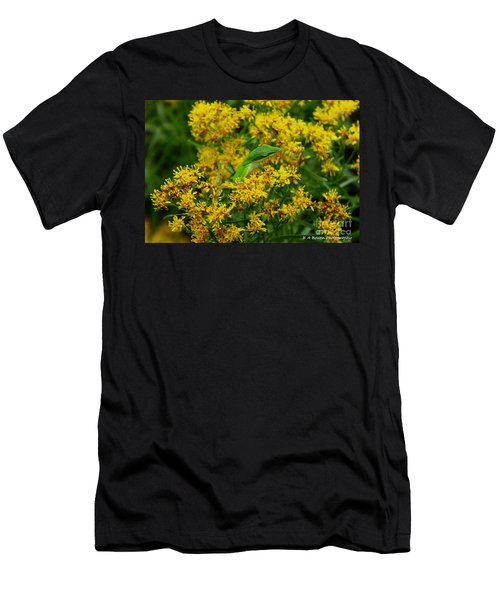 Green Anole Hiding In Golden Rod Men's T-Shirt (Athletic Fit)
