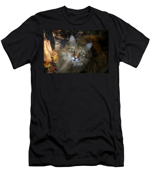 Green Eyed Maine Coon Men's T-Shirt (Athletic Fit)