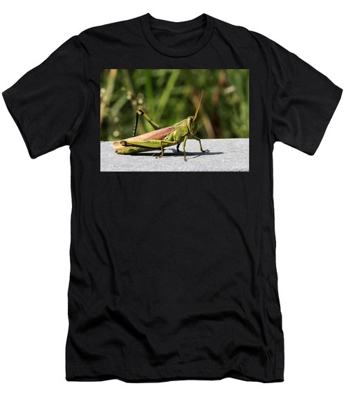 Green Grasshopper Men's T-Shirt (Athletic Fit)
