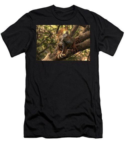 Green Iguana Men's T-Shirt (Athletic Fit)