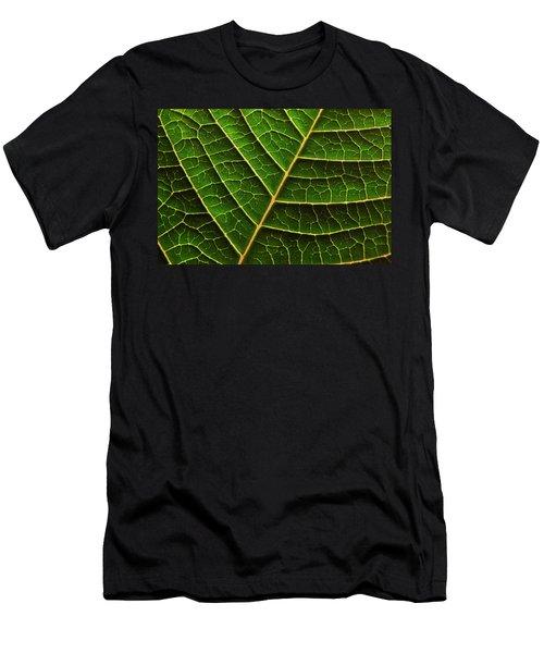 Green Leaf Macro Men's T-Shirt (Athletic Fit)