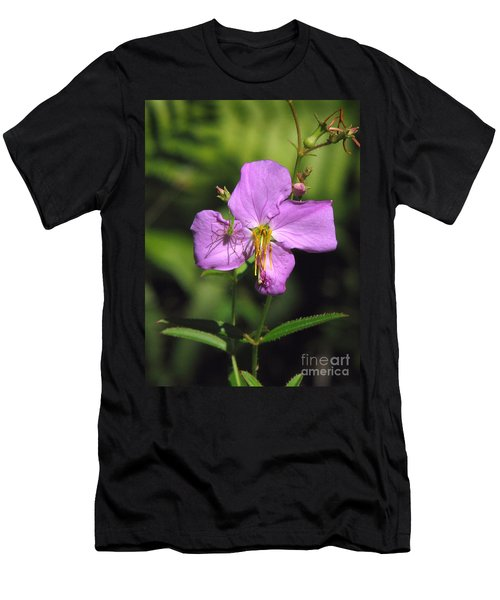 Green Lynx Spider On Meadow Beauty Men's T-Shirt (Athletic Fit)