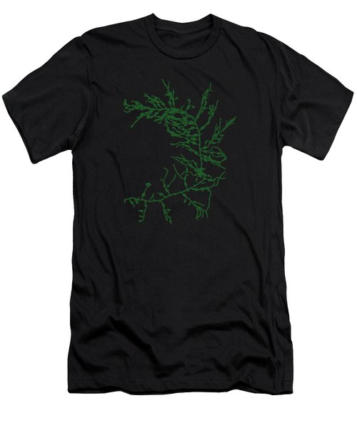 Green Seaweed Art Cystoseira Fibrosa Men's T-Shirt (Athletic Fit)