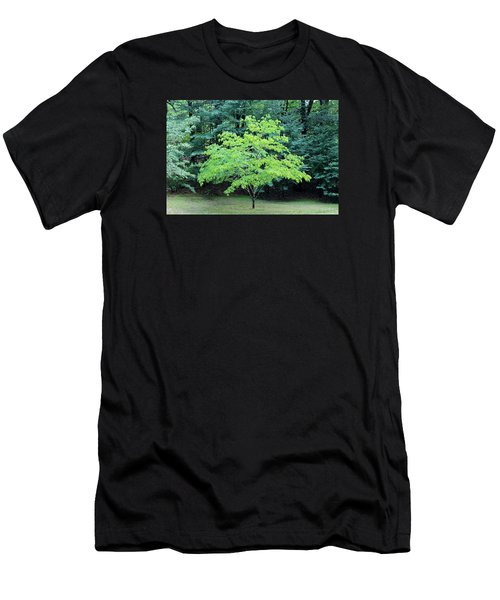 Green Standout Tree Men's T-Shirt (Athletic Fit)