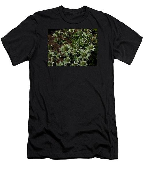 Green Thistles In Botanical Garden Of Bern Men's T-Shirt (Athletic Fit)