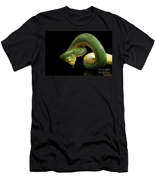Men's T-Shirt (Athletic Fit) featuring the photograph Green Tree Python. Morelia Viridis. Isolated Black Background by Sergey Taran