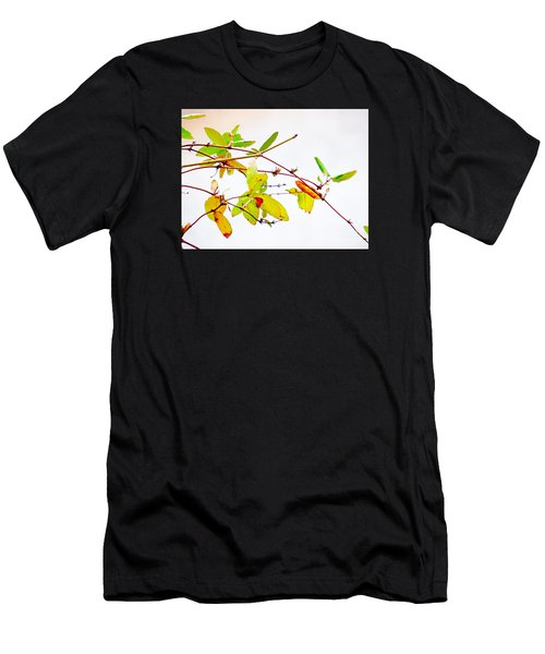 Green Twigs And Leaves Men's T-Shirt (Athletic Fit)