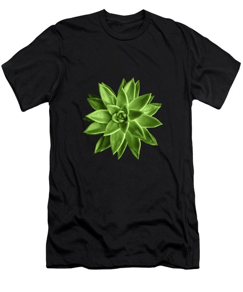 Greenery Succulent Echeveria Agavoides Flower Men's T-Shirt (Athletic Fit)