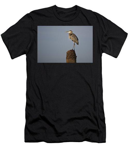Grey Heron Men's T-Shirt (Athletic Fit)