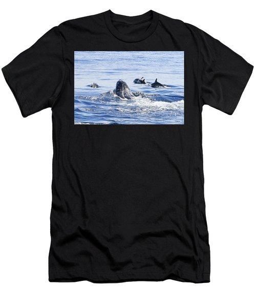 Grey Whale 1 Men's T-Shirt (Athletic Fit)