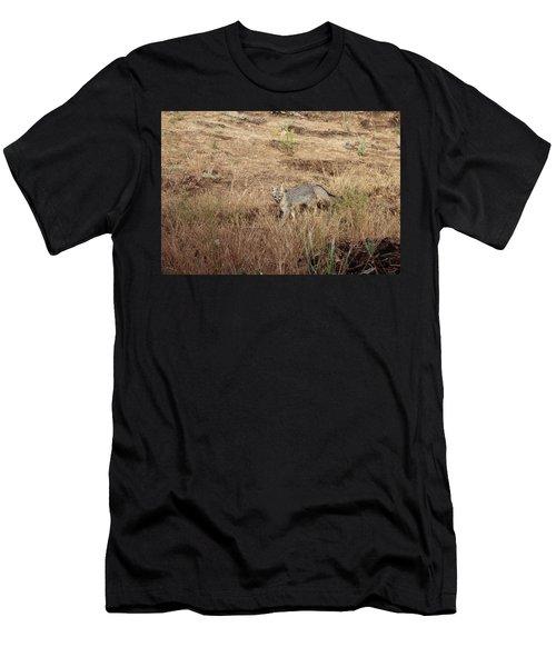 Greyfox1 Men's T-Shirt (Athletic Fit)