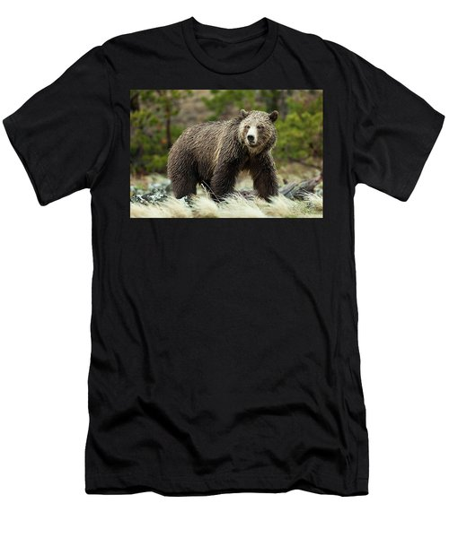 Men's T-Shirt (Athletic Fit) featuring the photograph Grizzly Bear by Wesley Aston