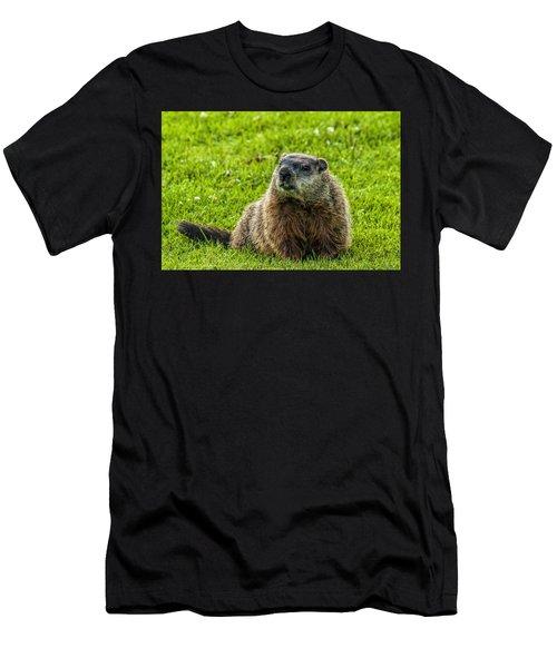 Ground Hog Men's T-Shirt (Athletic Fit)