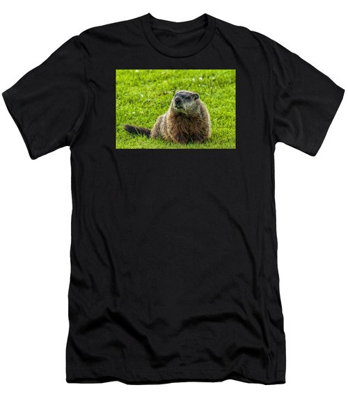 Ground Hog Men's T-Shirt (Athletic Fit)