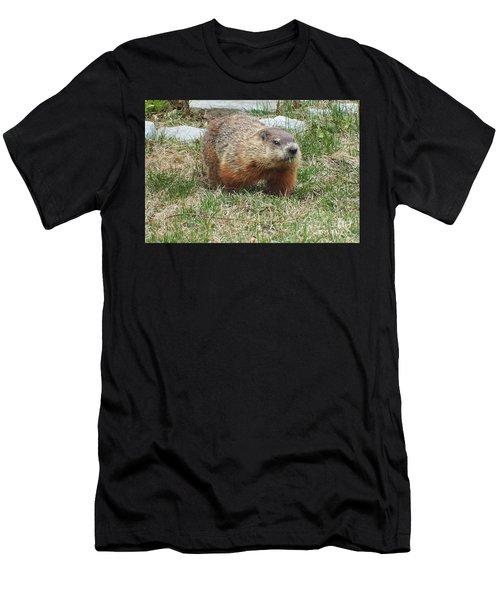 Groundhog Men's T-Shirt (Athletic Fit)
