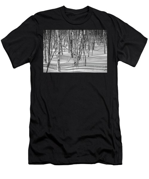 Group Of White Birches Men's T-Shirt (Athletic Fit)