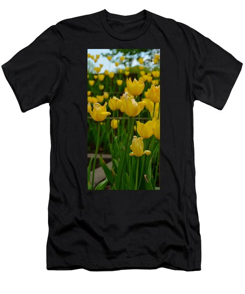 Grouping Of Yellow Tulips Men's T-Shirt (Athletic Fit)