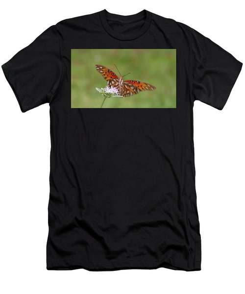 Gulf Fritillary On Elephantsfoot Men's T-Shirt (Athletic Fit)