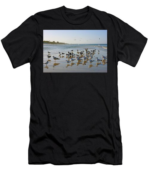 Gulls And Terns On The Sanbar At Lowdermilk Park Beach Men's T-Shirt (Athletic Fit)
