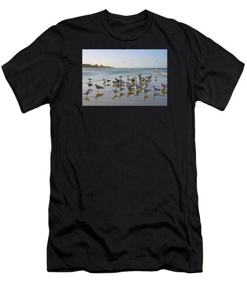 Gulls And Terns On The Sanbar At Lowdermilk Park Beach Men's T-Shirt (Athletic Fit)