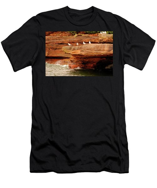 Gulls On Outcropping Men's T-Shirt (Athletic Fit)