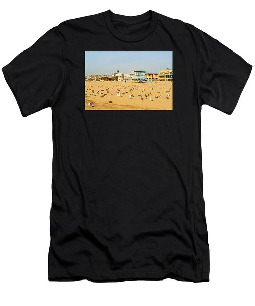 Gulls On Sand Men's T-Shirt (Athletic Fit)