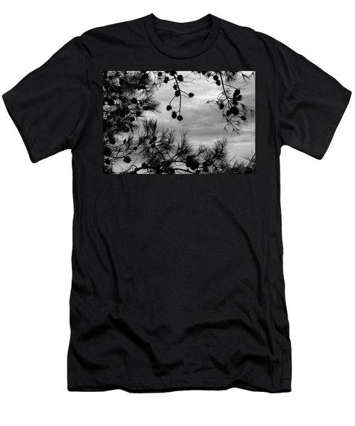 Hanging Pine Cones Men's T-Shirt (Athletic Fit)
