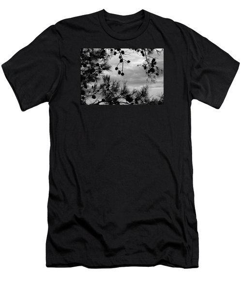Hanging Pine Cones Men's T-Shirt (Athletic Fit)