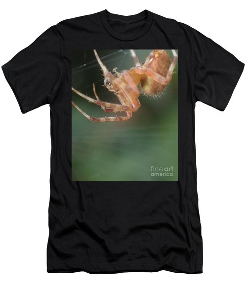 Hanging Spider Men's T-Shirt (Athletic Fit)