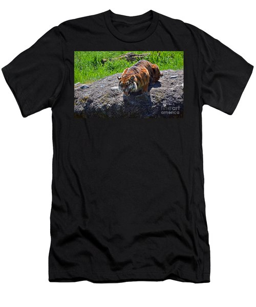 Hangry Men's T-Shirt (Athletic Fit)