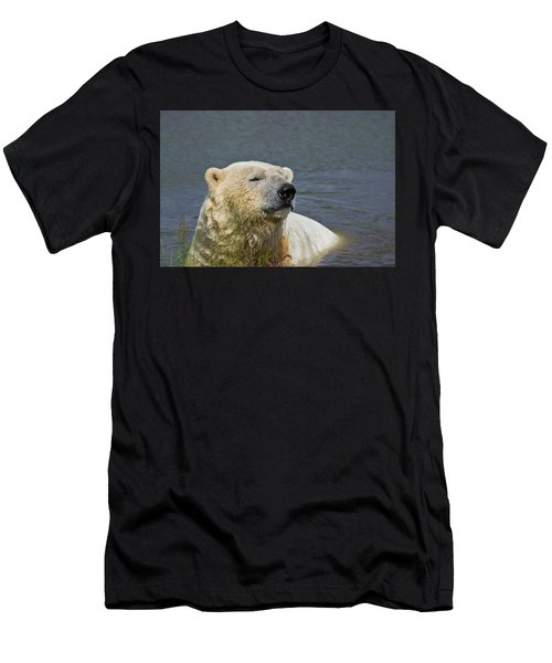 Happy Bear Men's T-Shirt (Athletic Fit)